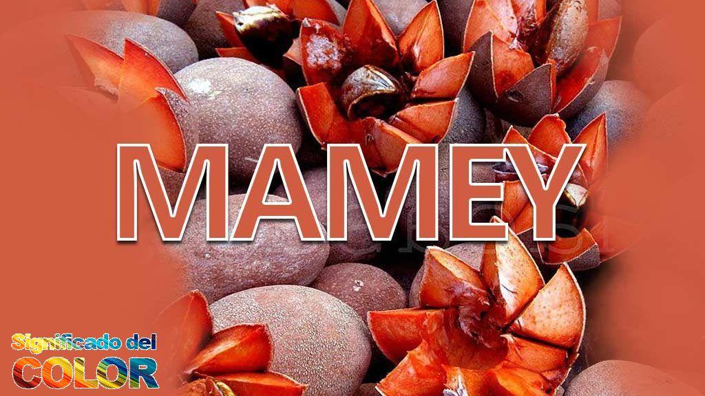 Mamey