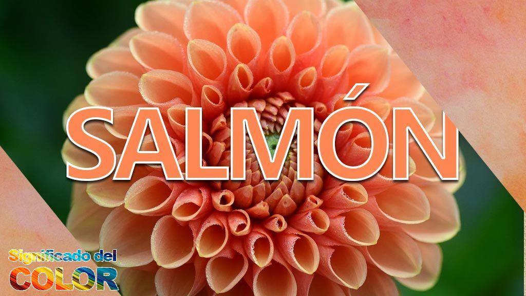 Significado del color salmón